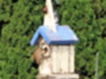 birdhousewren.jpg