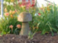 mushroomgarden.jpg