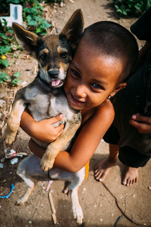 Phnom Penh : The Struggling Smiles A boy and his dog
