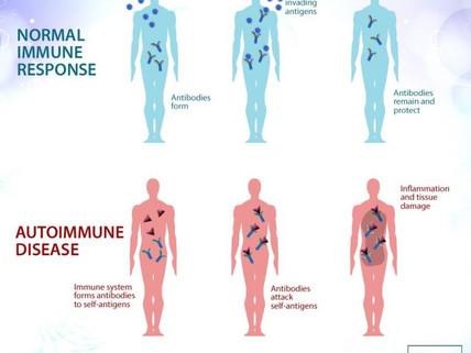 How to Reverse Autoimmune Disease