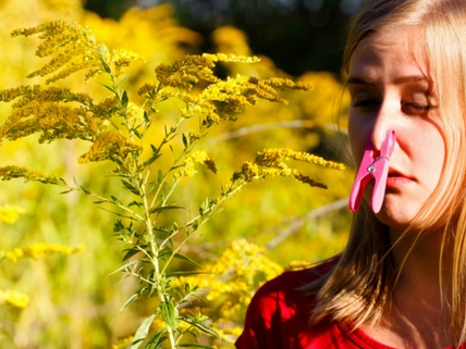 Probiotics for Spring (and Other) Allergies