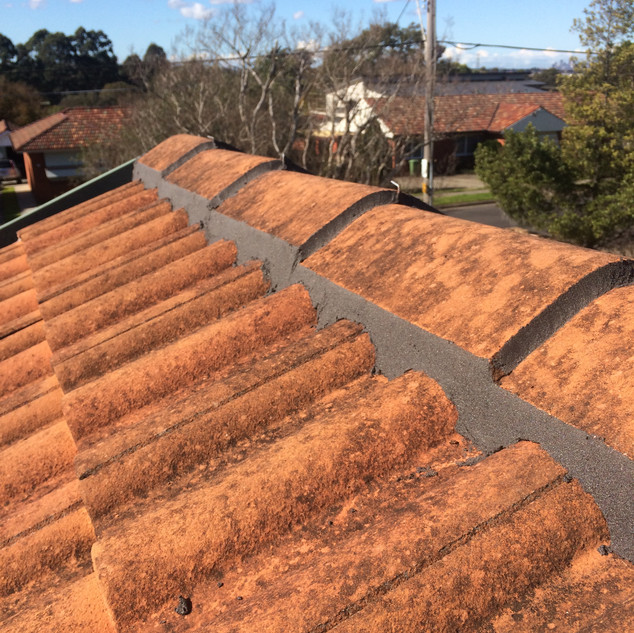NSRS | Pointing Tile Roofs