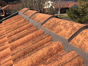 NSRS, North Shore ROofing SOlutins, Roof, Roofing, Metal Roof, Colorbond,