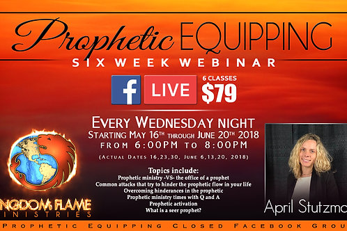 Prophetic Equipping by April Stutzman