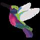Hummingbird.png