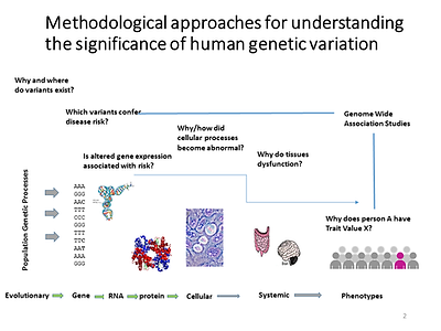 GeneticEpidemiology.png