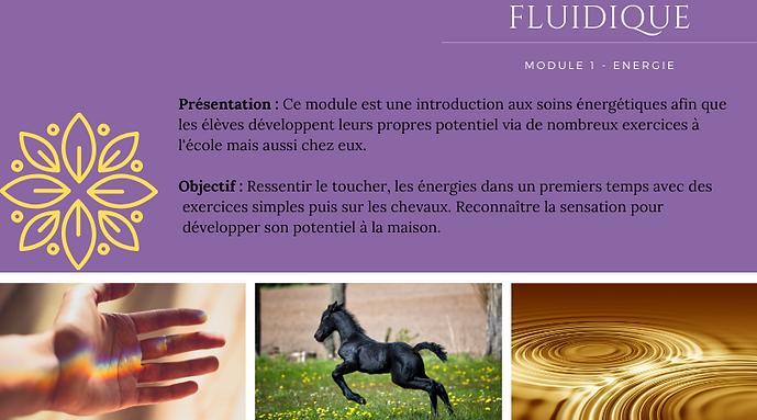 fluid 1.png