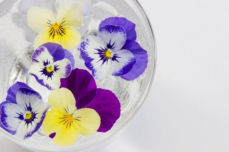 夏でもお花を楽しみたい