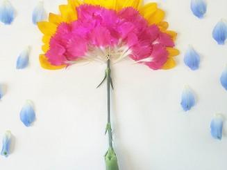 お花に感謝