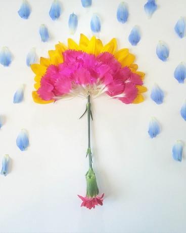 お花に感謝 廃棄されるお花たちに活躍の場を作ります