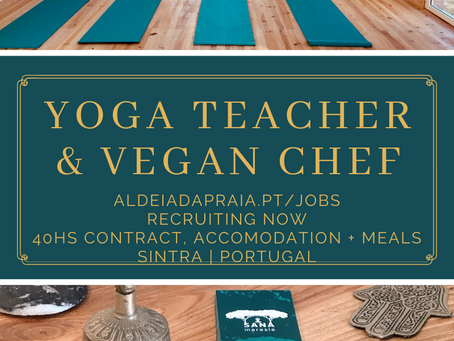 Surf & Yoga Camp- recruiting now