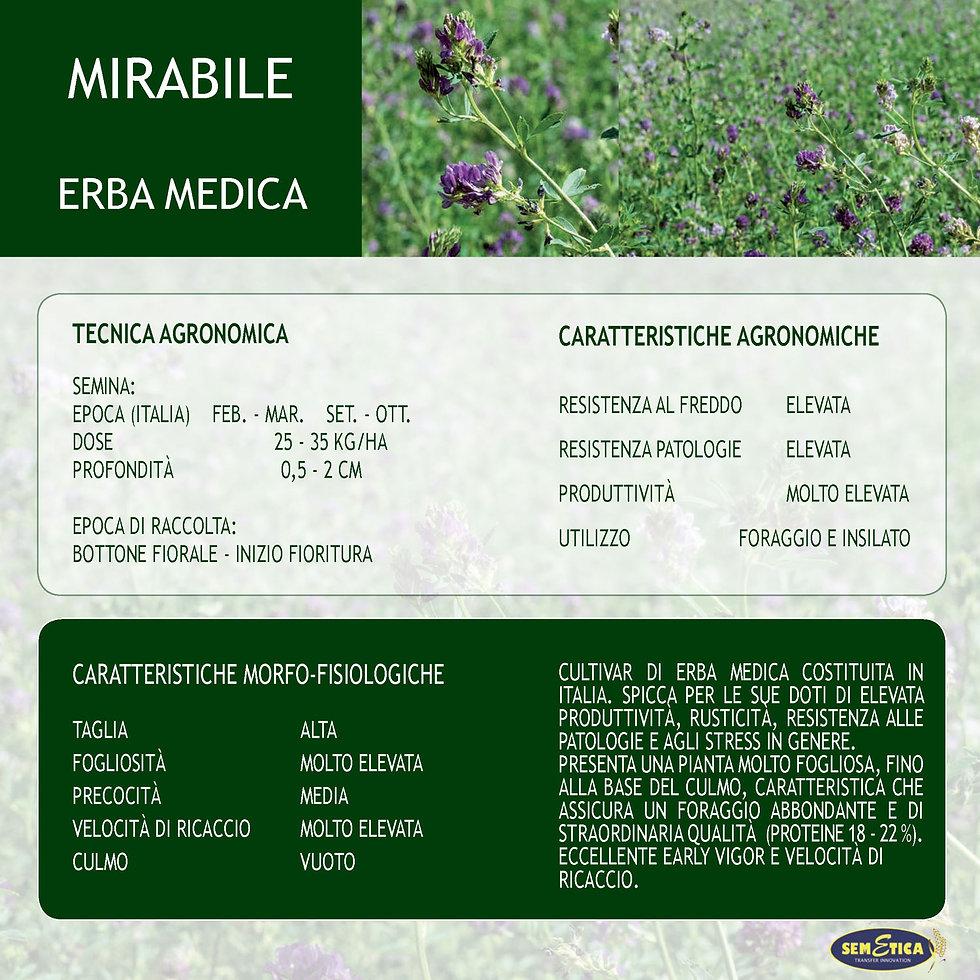 MIRABILE-FULL.jpg
