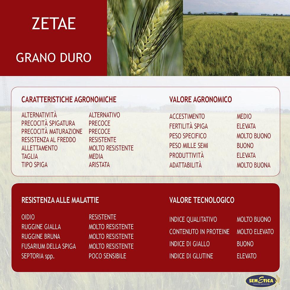 zetae-full.jpg