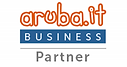 Badge-Aruba-Business-Partner-Verticale-1
