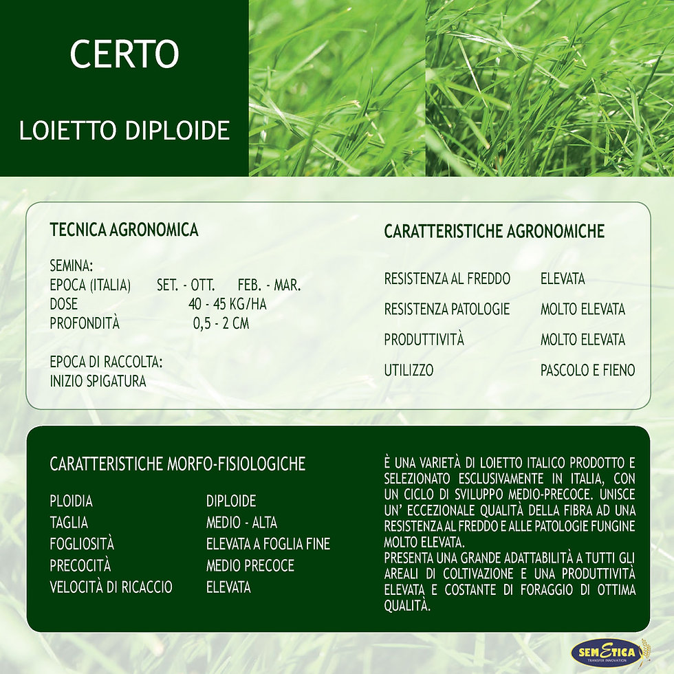 CATALOGO-STAMPA-definitivo-22.jpg