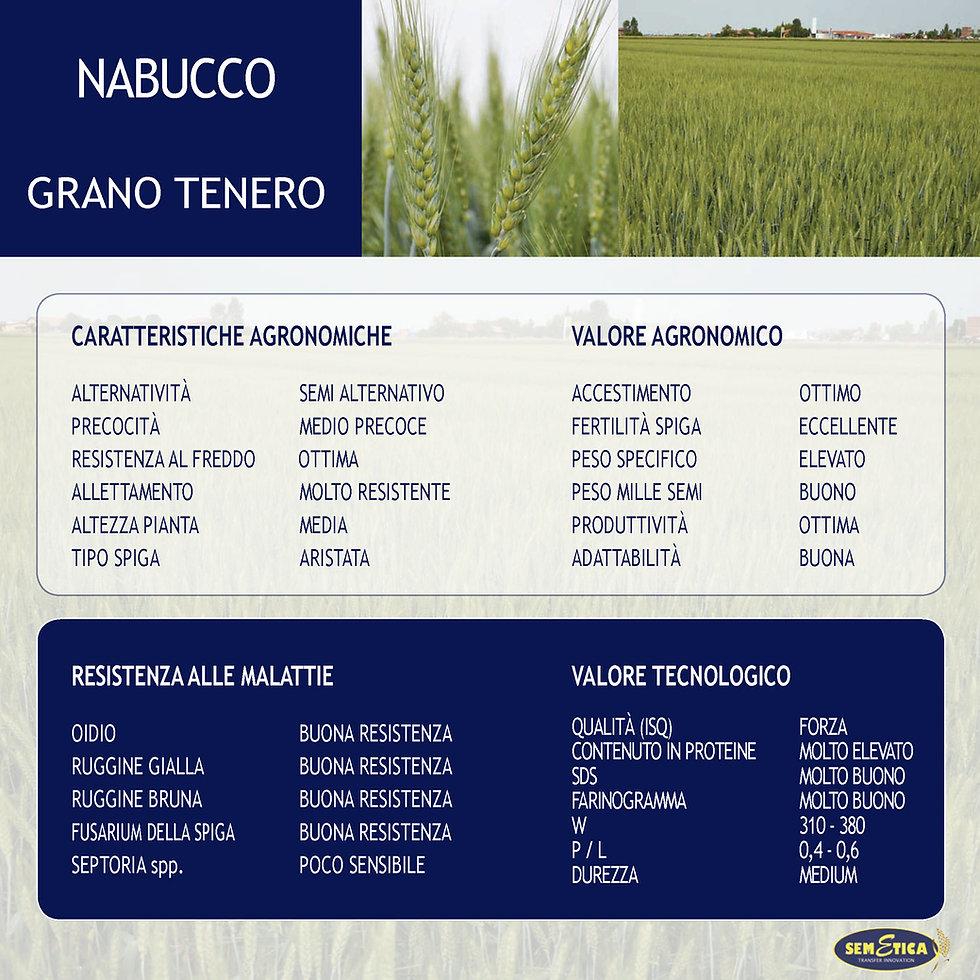 NABUCCO-FULL.jpg
