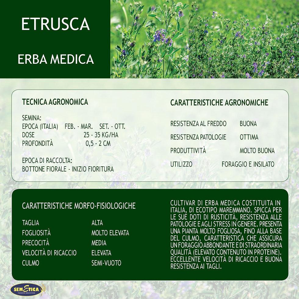 ETRUSCA-FULL.jpg