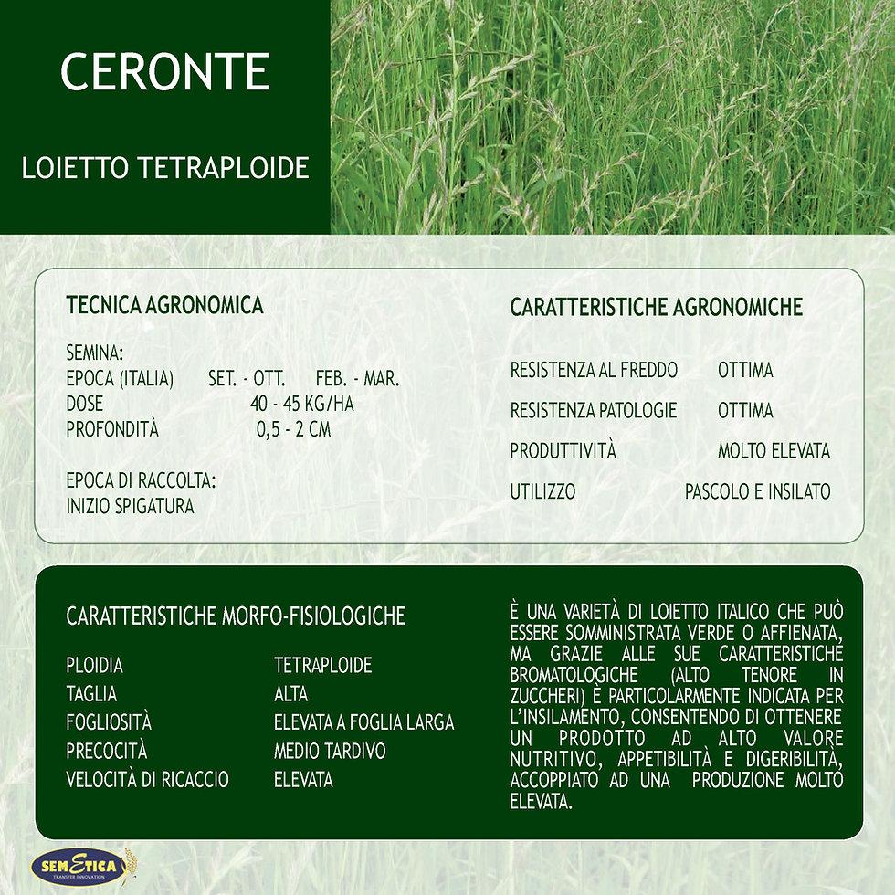 CERONTE-FULL.jpg