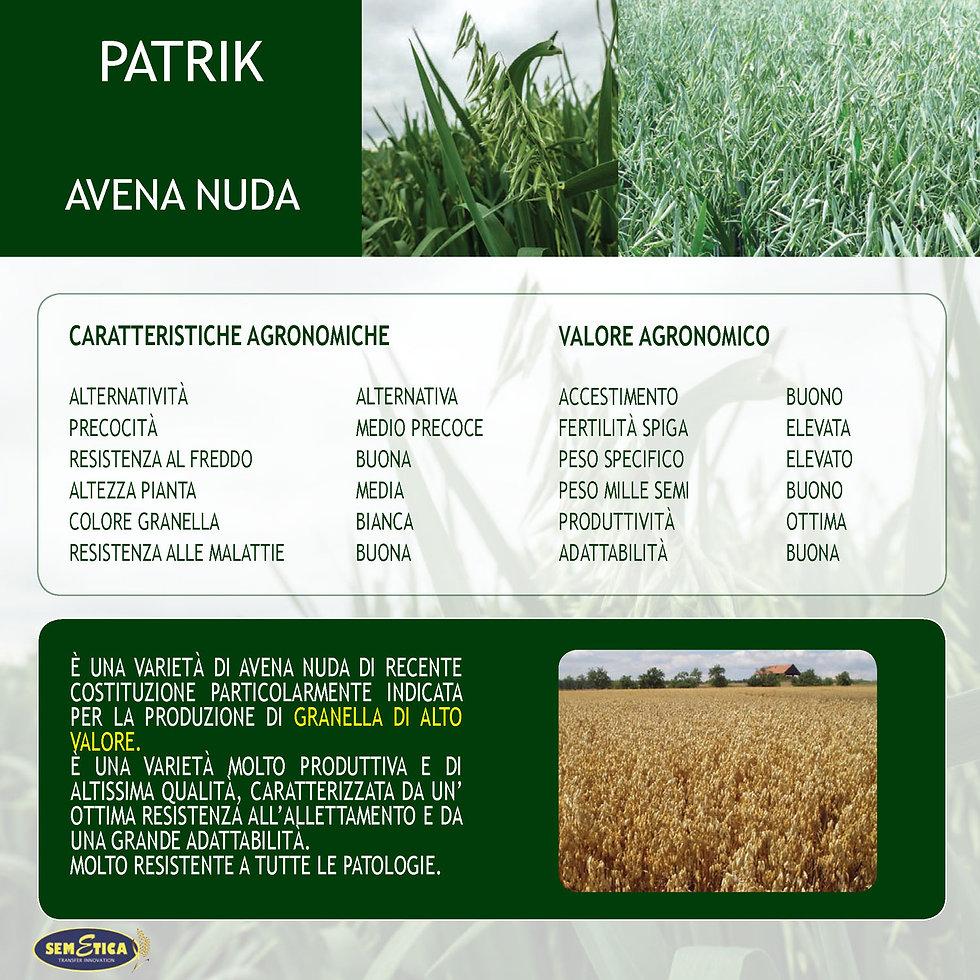 PATRIK-FULL.jpg