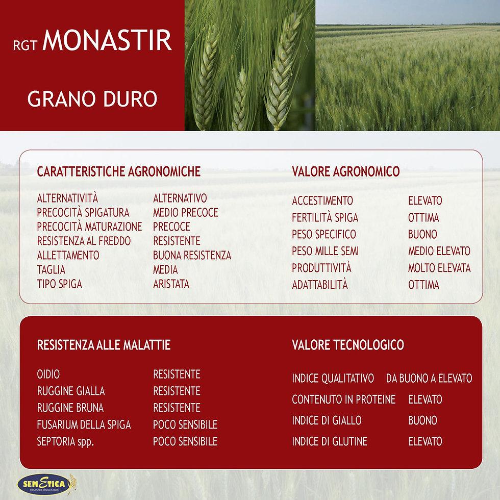 monastir-full.jpg