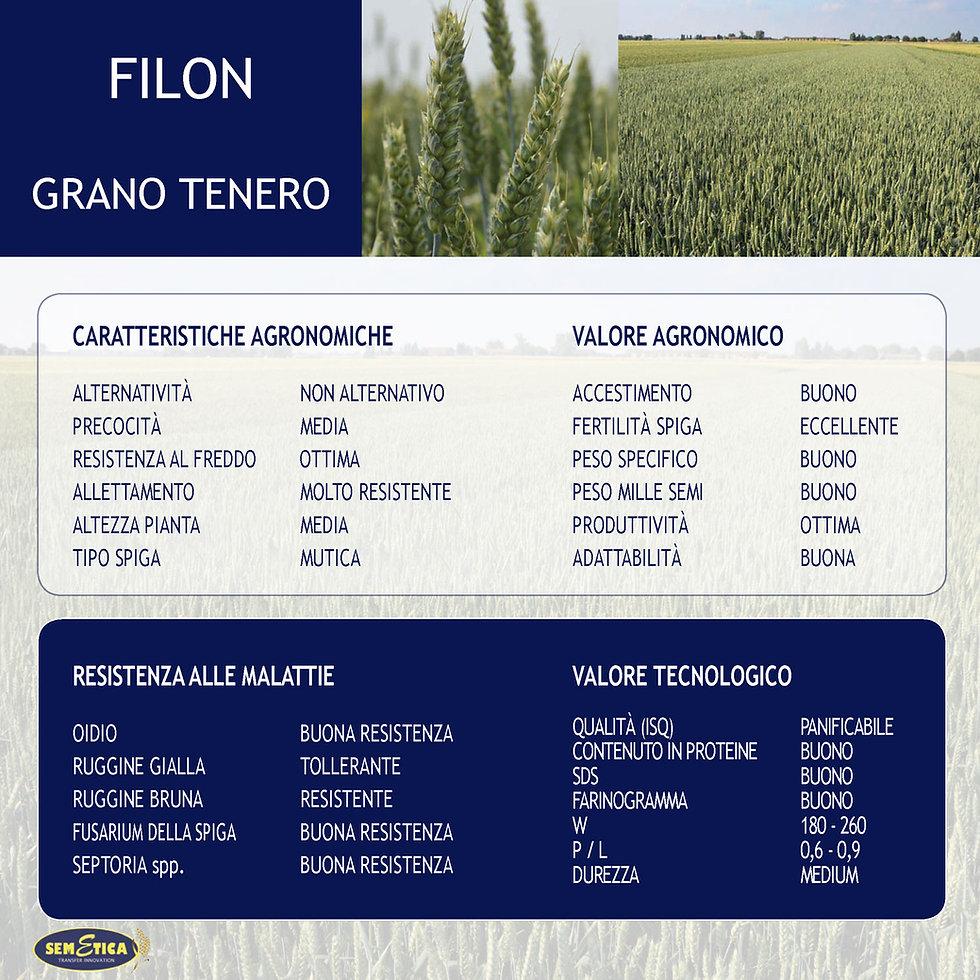 FILON-FULL.jpg