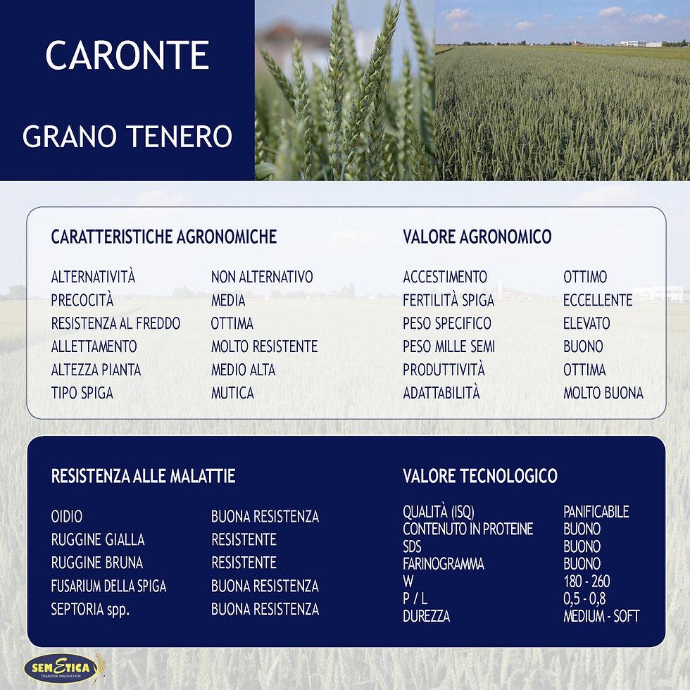 CARONTE-FULL.jpg