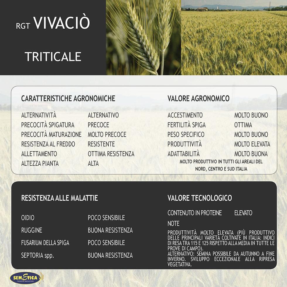VIVACIO-FULL.jpg