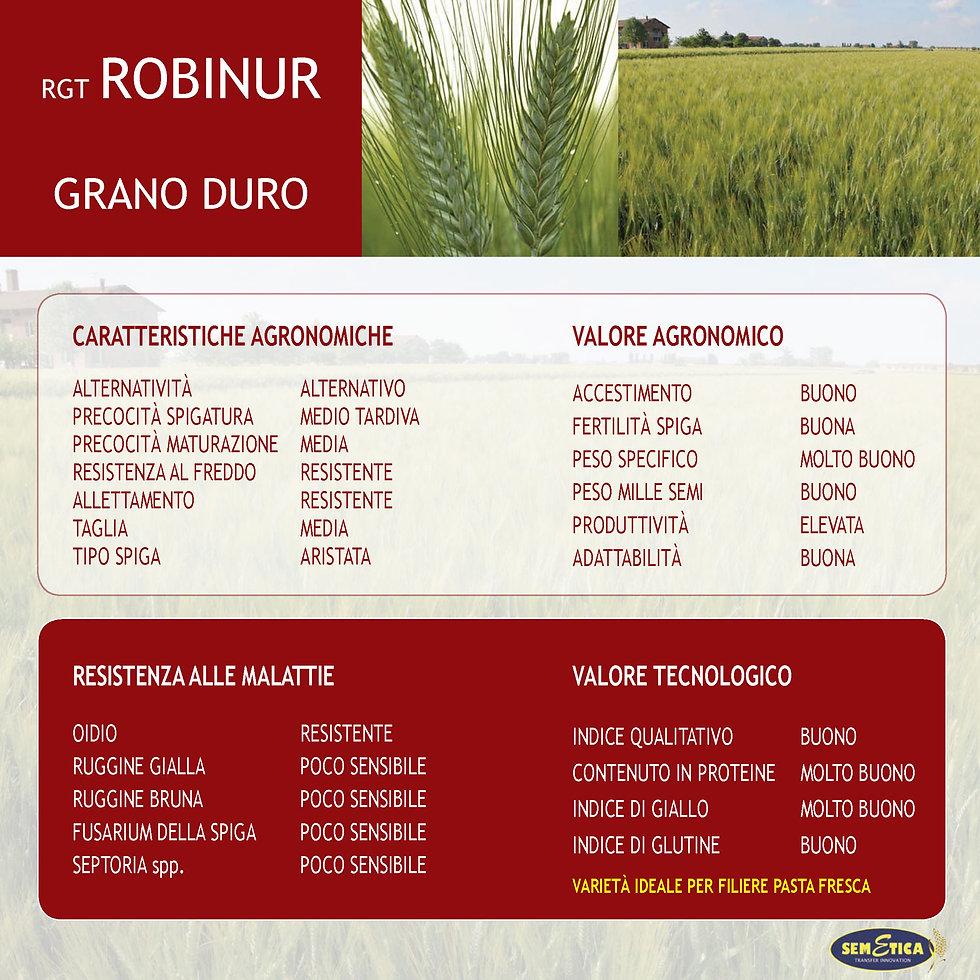 robinur-full.jpg