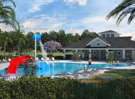 Wesbridge Amenity - Wesley Chapel, FL