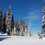 Wintermärchen ob Zweisimmen