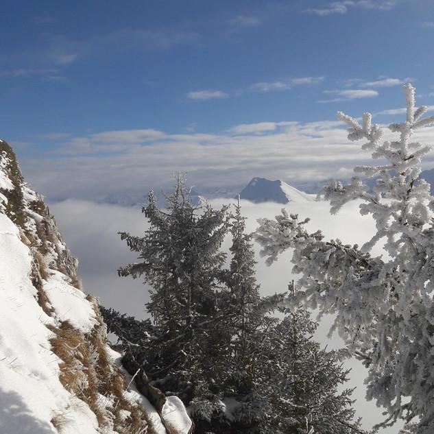 Über dem Nebel im Simmental
