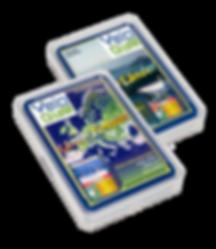 Kartenspiele mit VeloGym Logo_2.png
