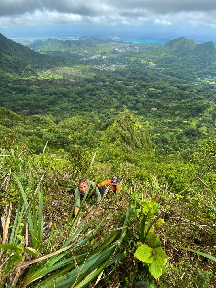 hikers on windward olympus