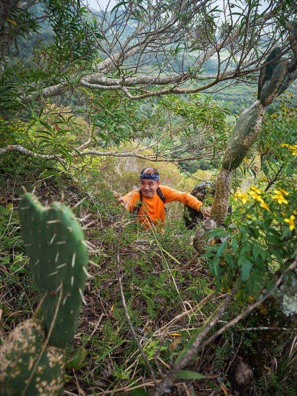 hiker at Waianae range