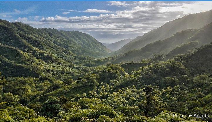 waimalu valley