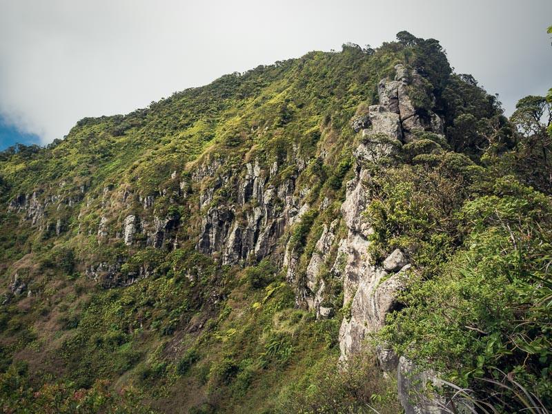 South face of Mt Ka'ala