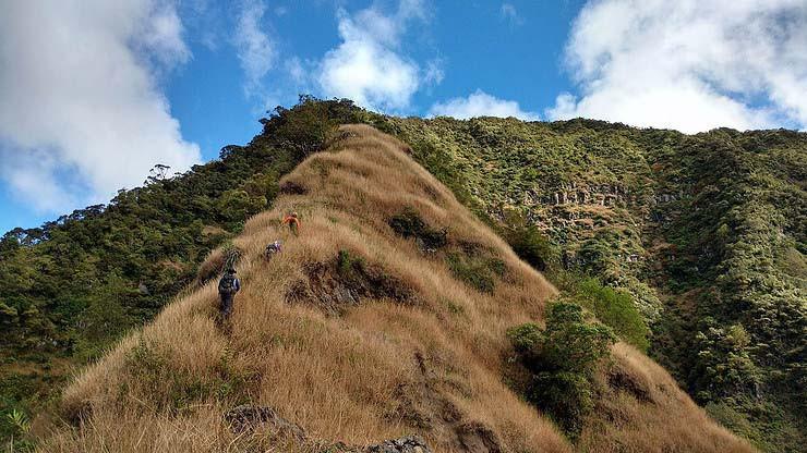 hikers bushwhacking up ka'ala