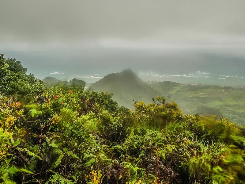 misty views from the northern Ko'olau mountains