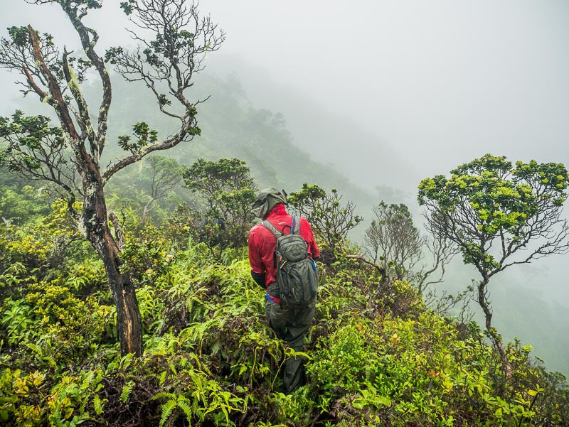 hiker in misty mountains