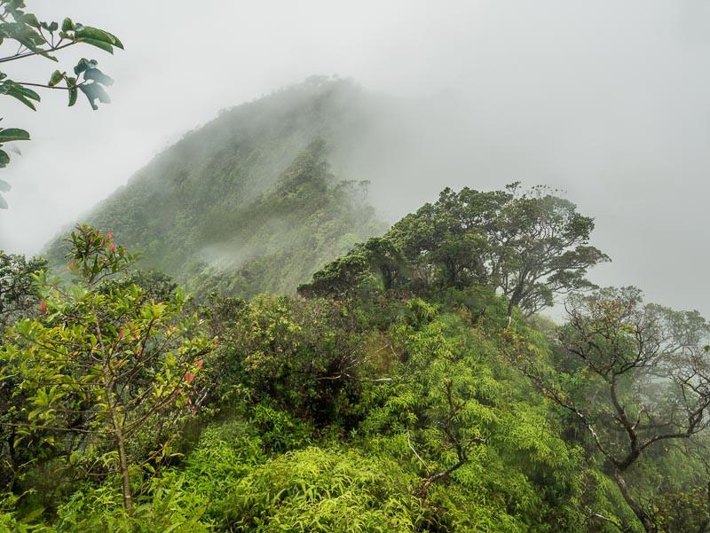 misty mountain peak