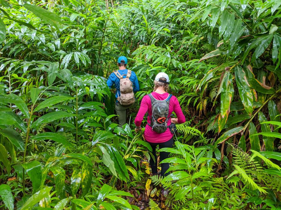 hikers between ginger