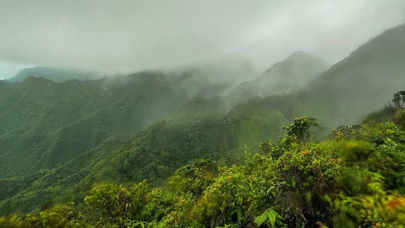 misty conditions on the northern Ko'olau mountains