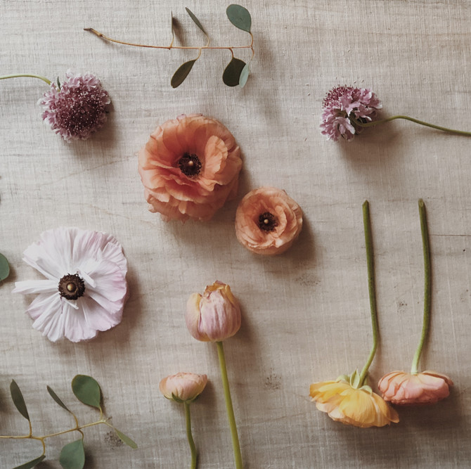 Top 3 Favorite Spring Flowers for Weddings and Centerpieces in Michigan