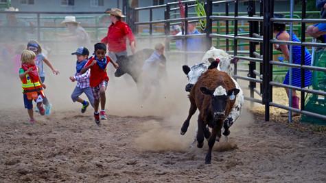 20170629_Beaver Creek Rodeo_59_Kids_Calf