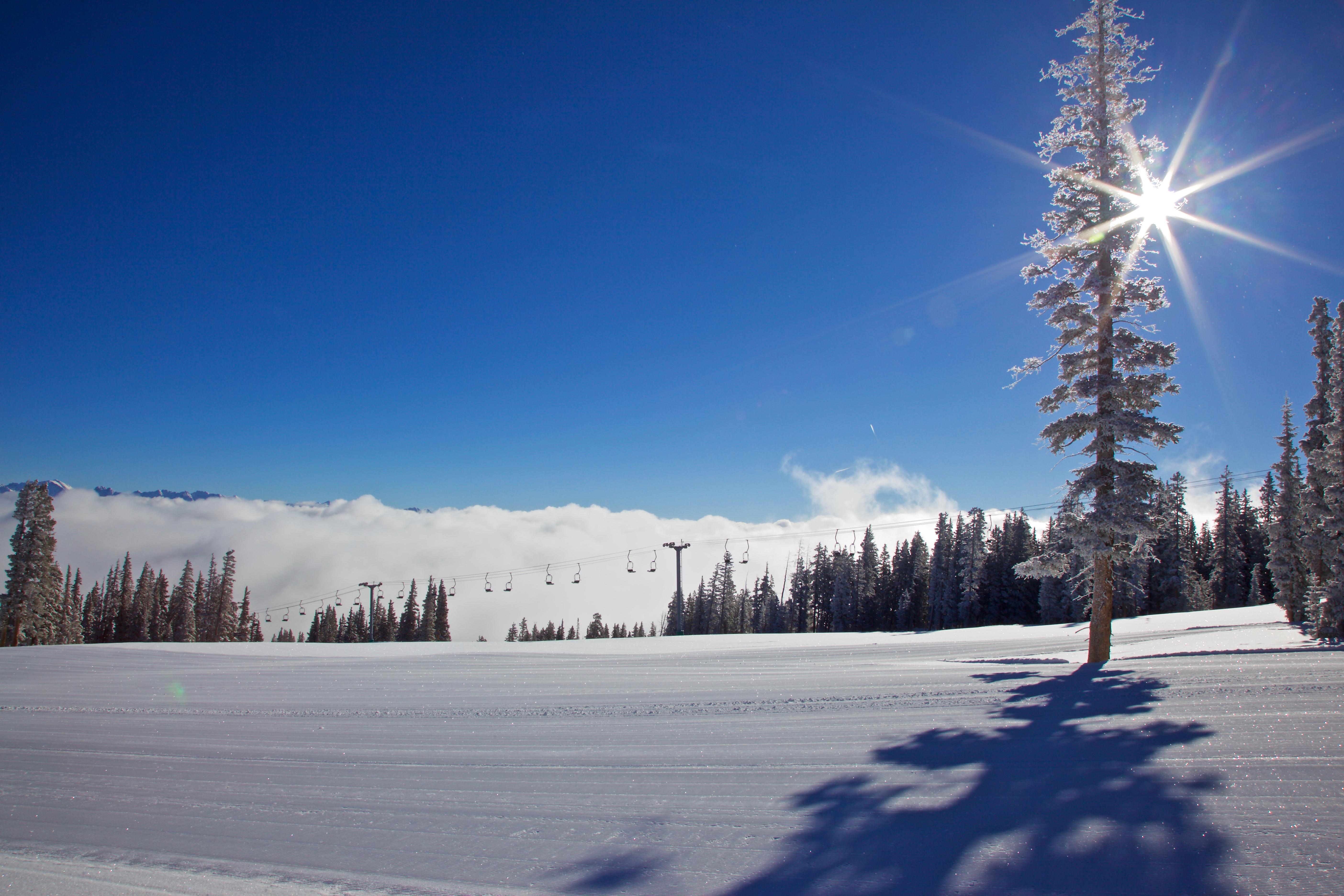 20170405_BC_Snow Sunrise Scenic_Trees_Ch