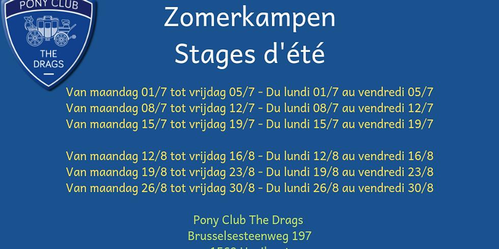 Zomerkampen - Stage d'été 12/8-16/8