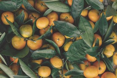 Clementine