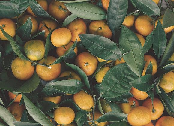Confiture Mandarine