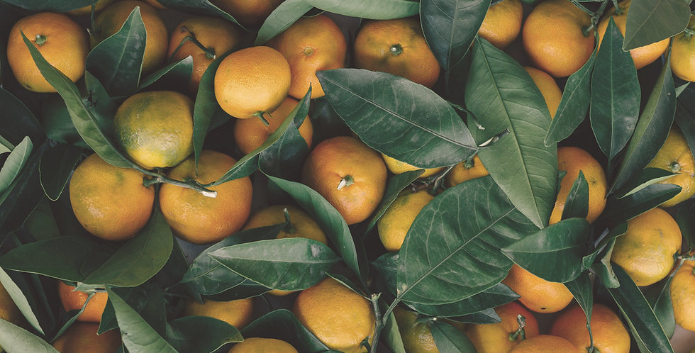 Organic Clementines 2lb bag