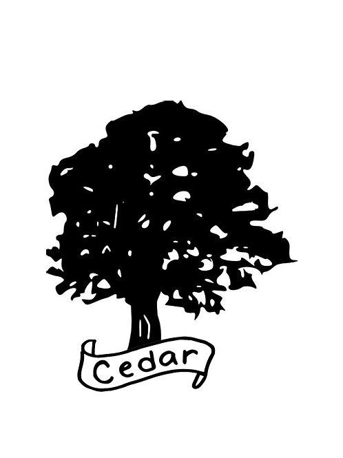 Cedar (Live Edge Slabs)
